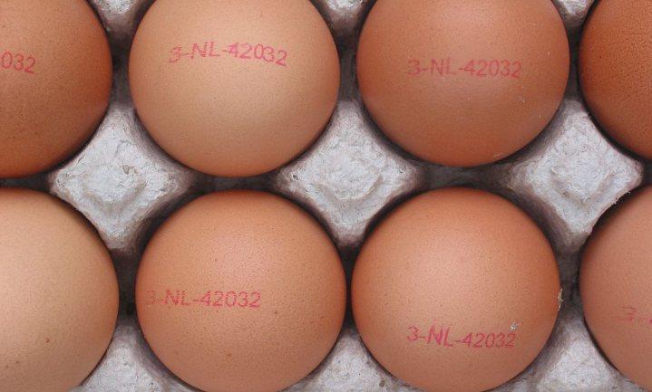 Op 10 juli uitspraak: had de NVWA eierboeren moeten waarschuwen?