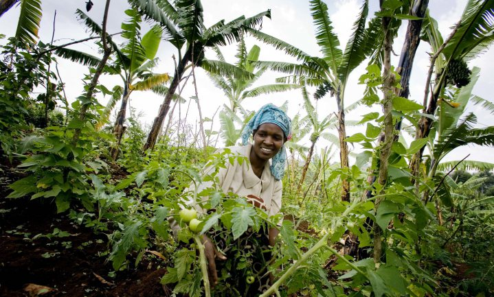 More people, slow growth - how to boost development in Sub-Saharan Africa?