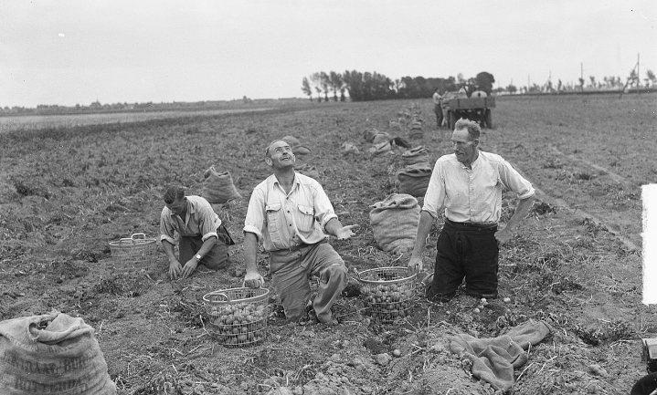 'Boeren onteigenen, geen enkel probleem'