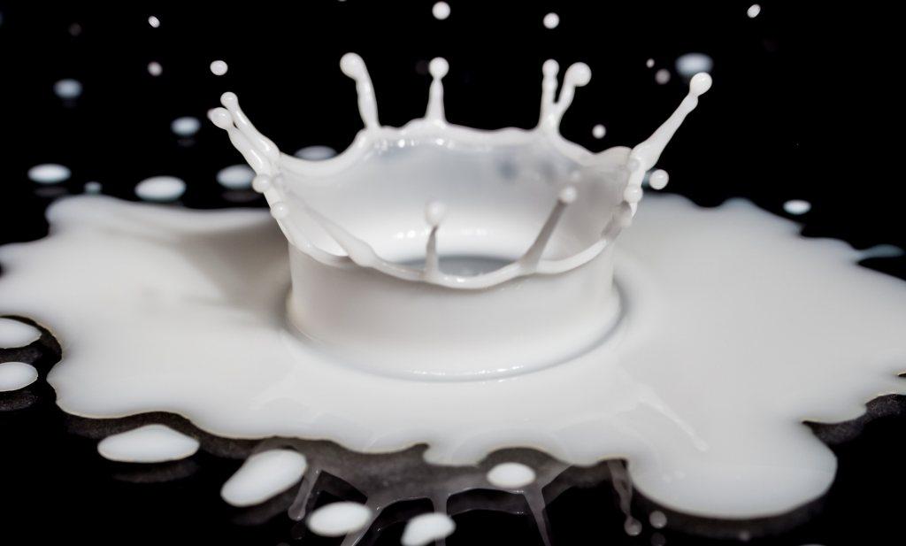 'Van melk ga je eerder dood'