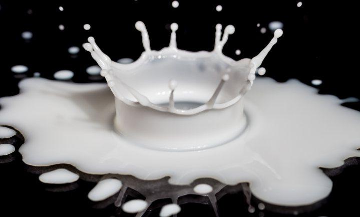 Zonder synthetische melk is Nederland voedselvoorsprongland af