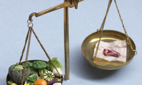 Ook Vlaamse voedingsdriehoek houdt nu rekening met het milieu