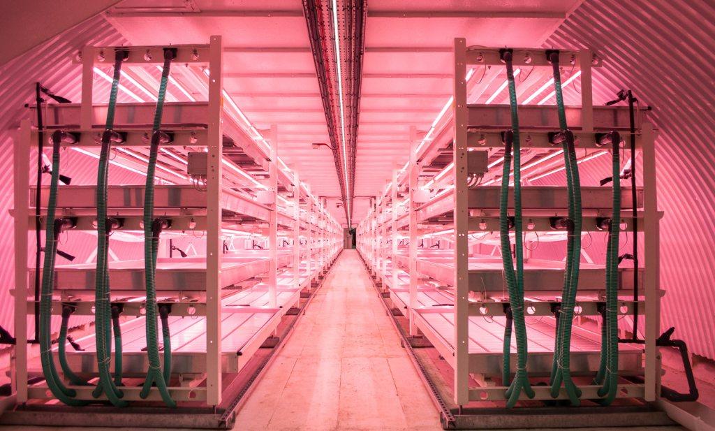 The Future of Food: voor rijke consumenten