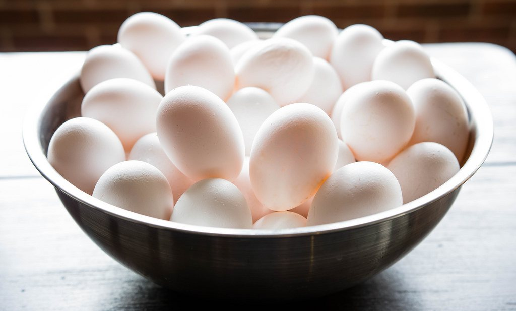 Een eitje van een kip die insecten eet, mag niet biologisch heten