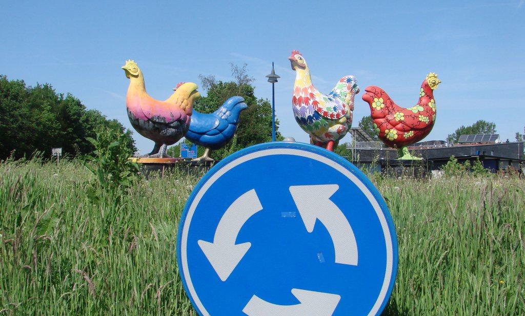 Hekendorp: 150.000 kippen gedood wegens vogelgriep