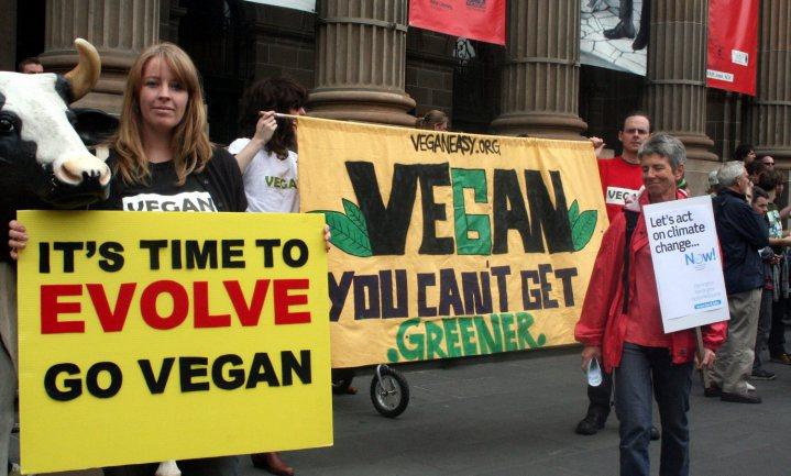 10 daags dieet suggereert: veganisme is duidelijk gezonder
