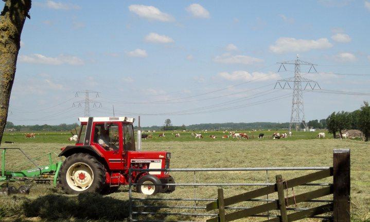 Koning noemt landbouw als eerste hoop Nederlandse economie