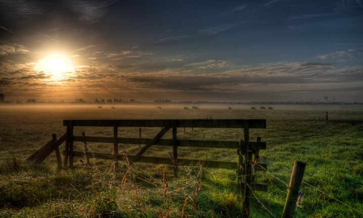 Waarmee maken onze boeren en tuinders winst in 2030?