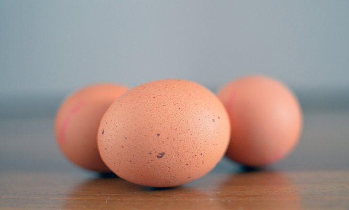Hollands ei blijft in ban griep