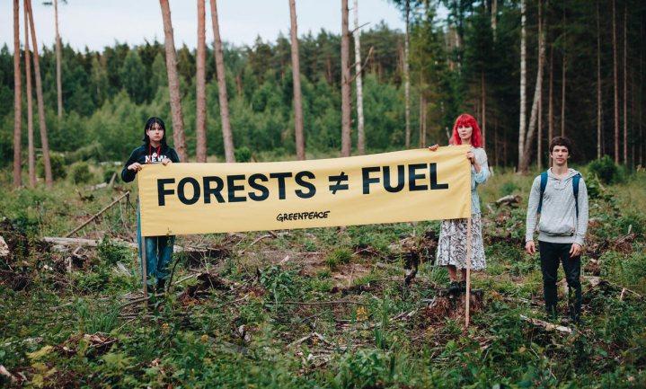 Milieuorganisaties blazen Convenant Duurzaamheid Biomassa op