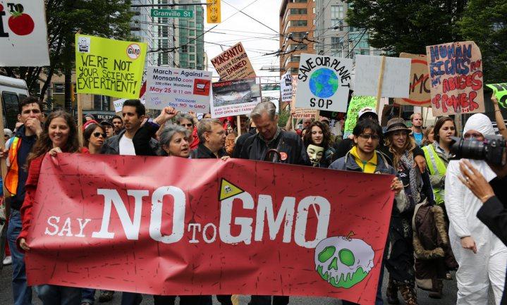 Industrie lobbyt geruisloos voor nieuwe generatie GMO's