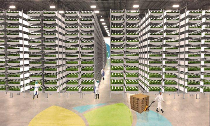 's Werelds grootste verticale 'aeroponic farm' mikt op New York