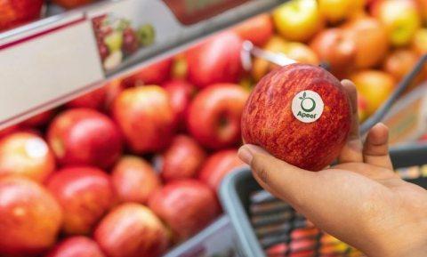Weer meer geld voor Apeel, de eetbare coating tegen bederf van verse vruchten