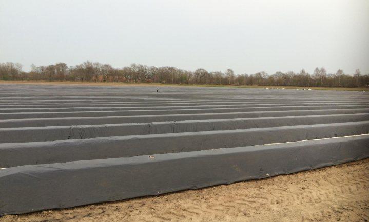GroenLinks wil einde aan landbouwplastic in Brabant