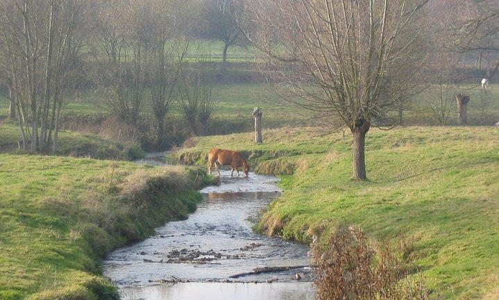 Hoe Nederland gifresten in water berekent blijft een mysterie
