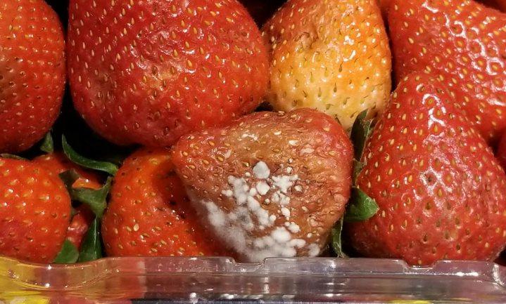 Driekwart van de Britten gooit wekelijks groente en fruit weg