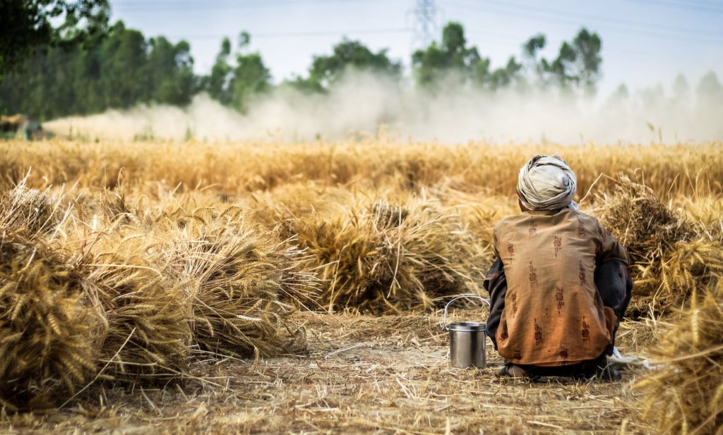 Gelukkige VPRO-boeren versus Yvon-tobbers, olie en varkens naar China