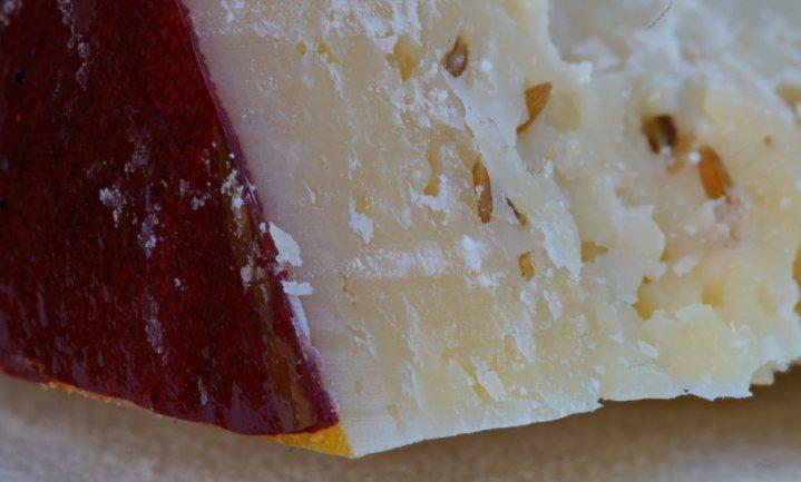 Eeuwenoude Leidse kaas is opeens een 'noviteit'