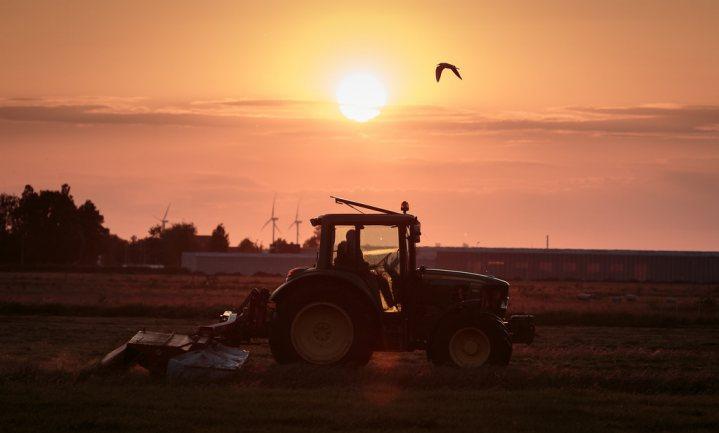 Voorstellen voor reductie veestapel 'te simpel'