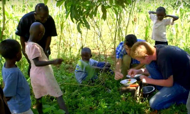 'Bugs' maakt eind aan gedroogde meelwormen