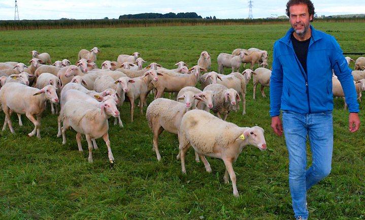 Bankier vindt als herder zijn stem