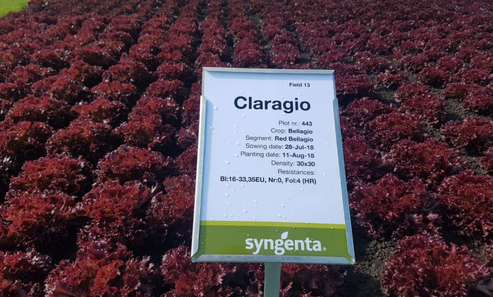 Syngenta wil niet meer van 'pesticiden' horen