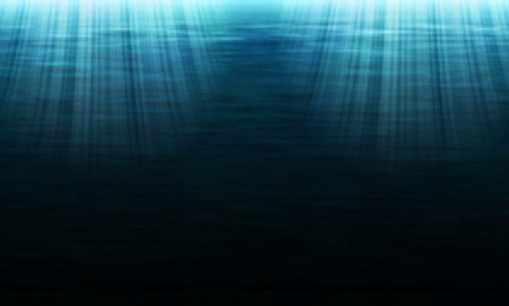 Plastic in garnaalachtigen uit de allerdiepste delen van de oceanen