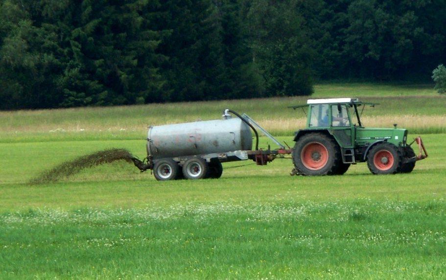 'Rutte-III ziet geen noodzakelijk verband tussen klimaat en aantallen vee'