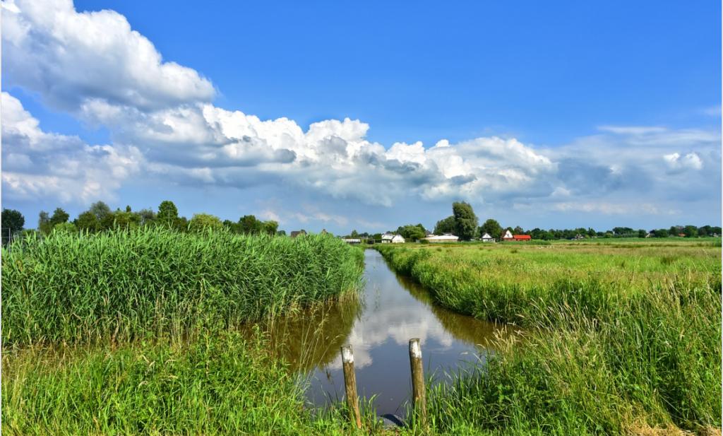 Bij een groene Nederlandse landbouw hoort een groene grondbank