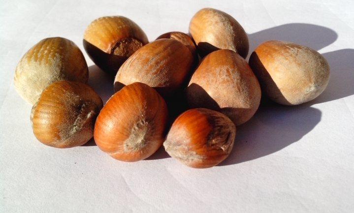 Voor de smaak hoeft Ferrero geen Italiaanse hazelnoten in de Nutella te stoppen
