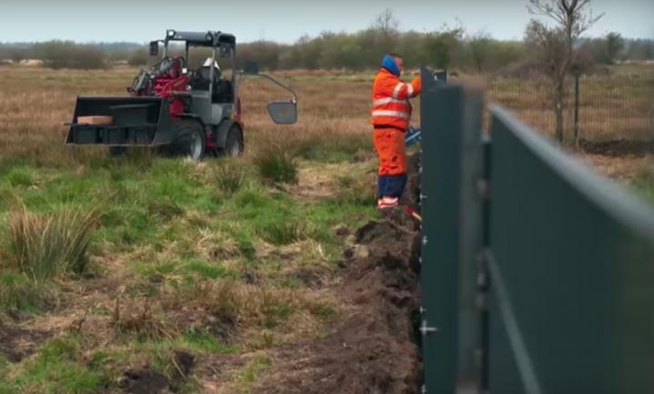 'Het Deense hek houdt de varkenspest niet buiten'