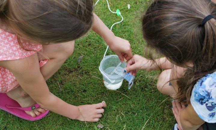 'Nederland zal Europese doelen voor waterkwaliteit niet halen'