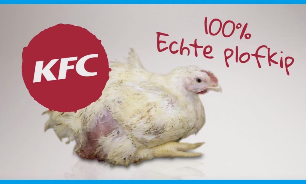 Wakker Dier richt pijlen op KFC-kip