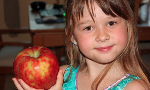 Als het van school moet, snacken kinderen dubbel zoveel meegebracht fruit