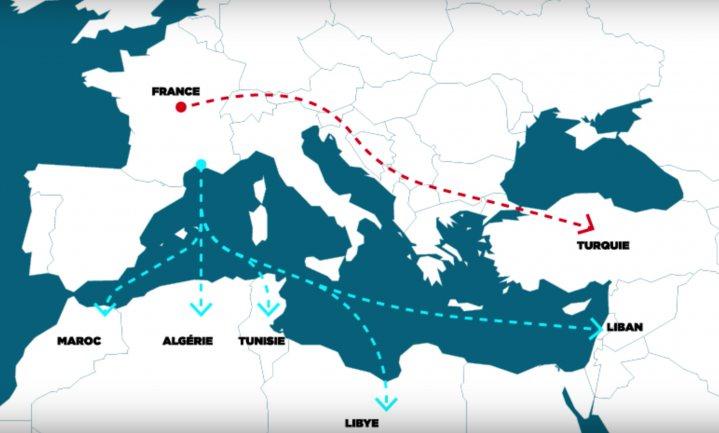 L214 toont slacht Franse runderen in Turkije en Libanon