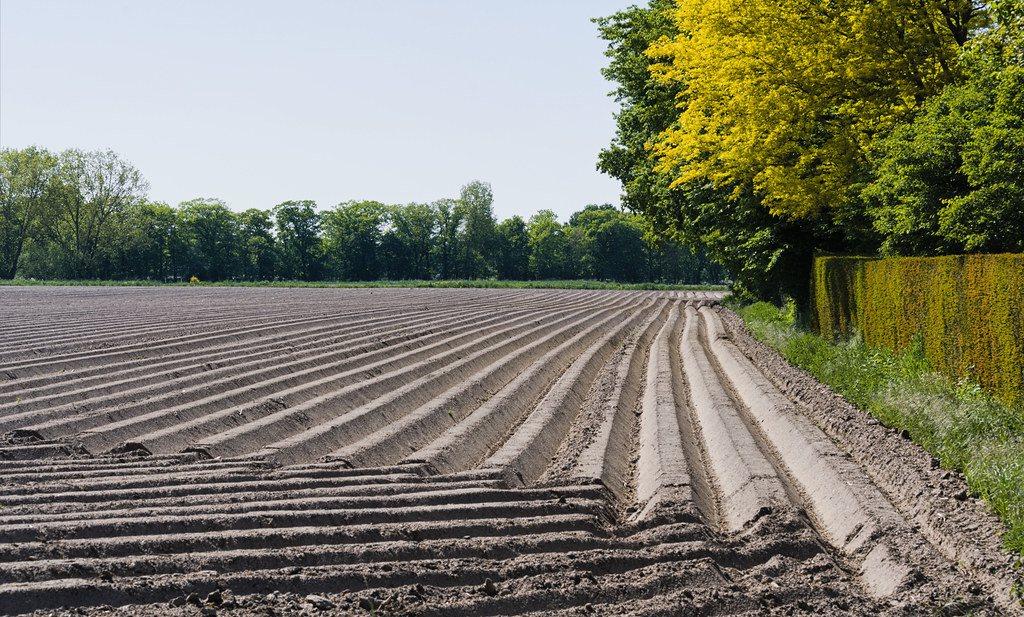 Het landbouwcollectief is en blijft stuk