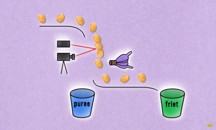 Nieuwe meetmethode scheidt aardappelen voor friet van pureepiepers