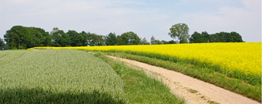Dijksma brengt Limburgse landbouw in bestaansnood