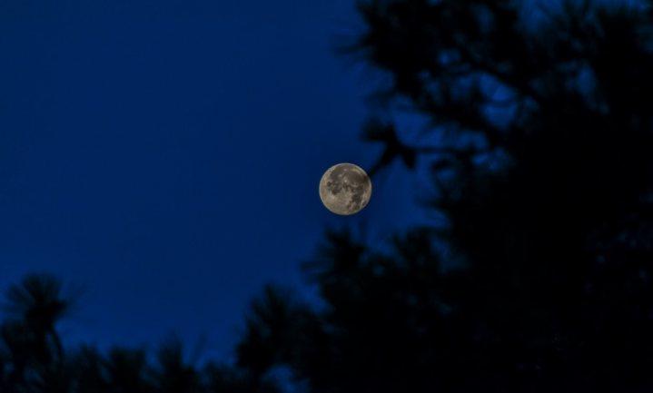 Verhuizen naar de maan