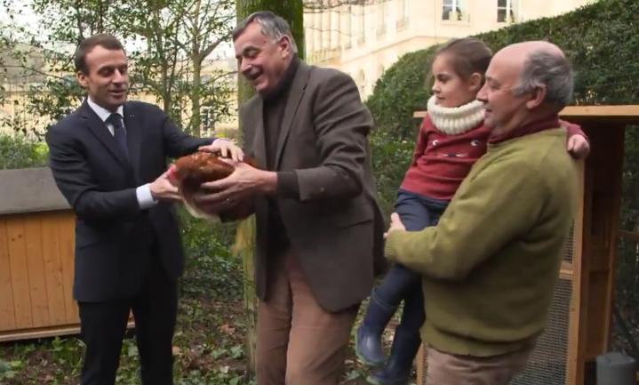 President Macron gaat kippen houden midden in Parijs