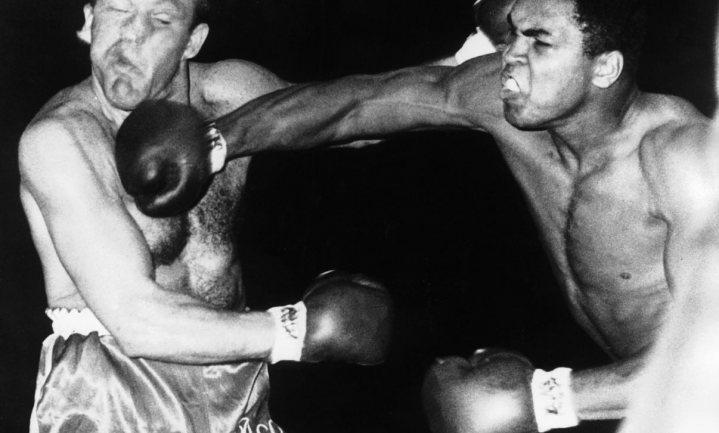 De NVWA als dansende bokser in de ring