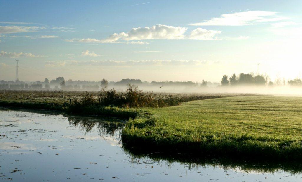 Negatieve rente is een unieke kans voor een nieuw Nederlands stikstofbeleid