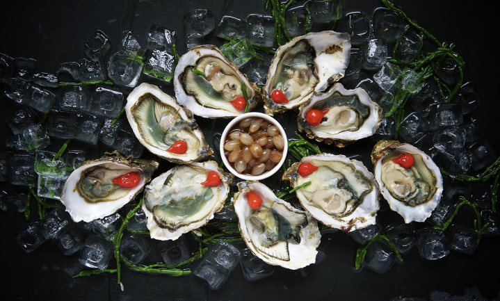 Culinair ontdekt: Oesters
