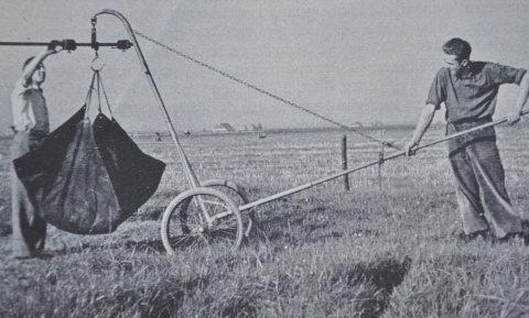 Het Ossekampen-experiment wordt misleidend gebruikt in het stikstofdebat