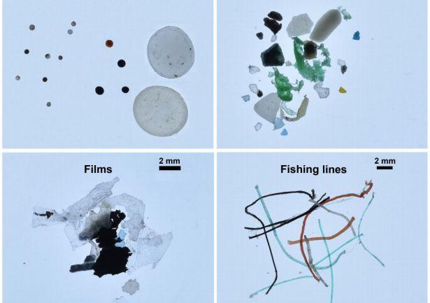 'Plastic rijst' in Noordelijke IJszee uit Europa en Amerika