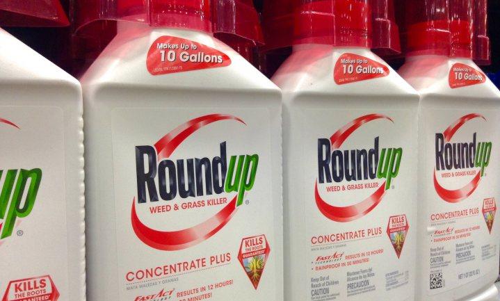 Bayer verliest en wint in eerste beroepszaak Roundup, het aandeel stijgt