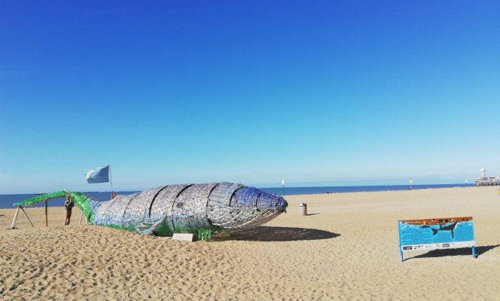 Stranden schoner geworden