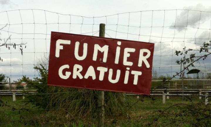 Het Hollandse mestmysterie
