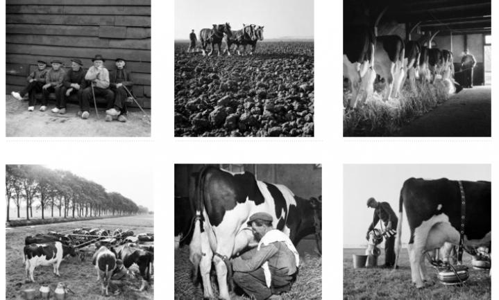 Fotomuseum zoekt kennis van het boerenleven