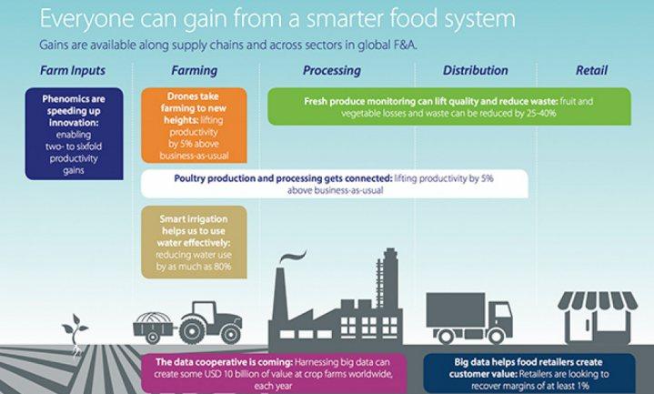 Rabobank: 'Slimmere' boeren en landbouw nodig om wereld te voeden in 2025